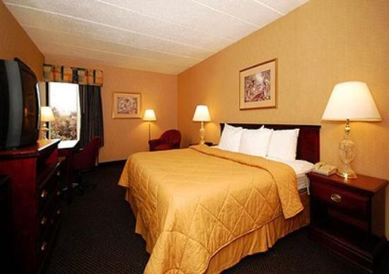 The View Inn & Suites: Guest Room -OpenTravel Alliance - Guest Room-