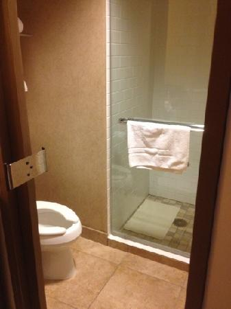 AT&T Hotel and Conference Center: nice but super small bathroom