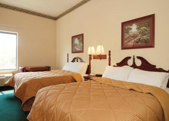 Comfort Inn - Montgomery / Carmichael Rd.: Guest Room
