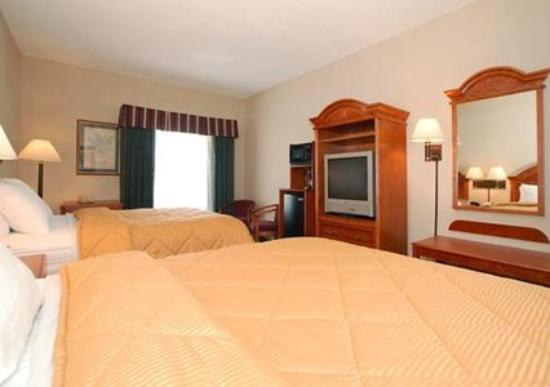Comfort Inn & Suites: Guest Room -OpenTravel Alliance - Guest Room-