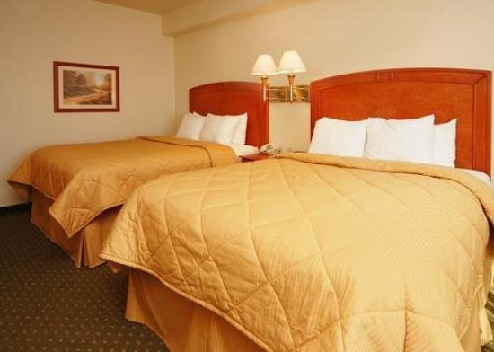 Comfort Inn & Suites: Guest Room