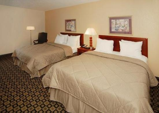 Comfort Inn & Suites Athens: Guest Room
