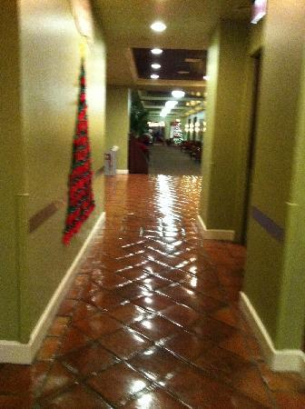 Palm Beach Shores Resort and Vacation Villas: Hallway