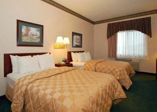 Comfort Inn: Guest Room