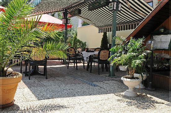 Nimrod Restaurant: the pleasant garden