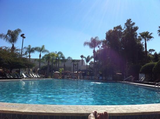Hilton Orlando Lake Buena Vista - Disney Springs™ Area: one of the two pools