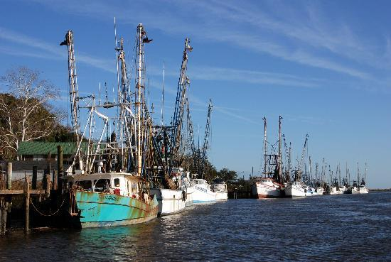 Darien Waterfront Inn: Shrimp Boats, Darien GA