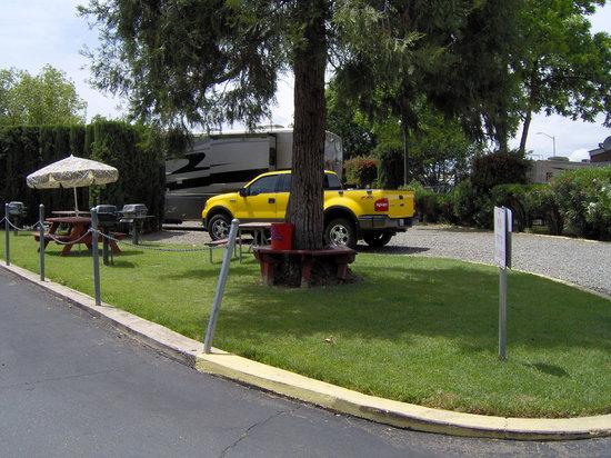 Stillman RV Park: BBQ Area