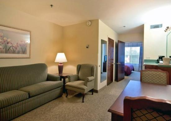 Econo Lodge Inn and Suites: King Suite