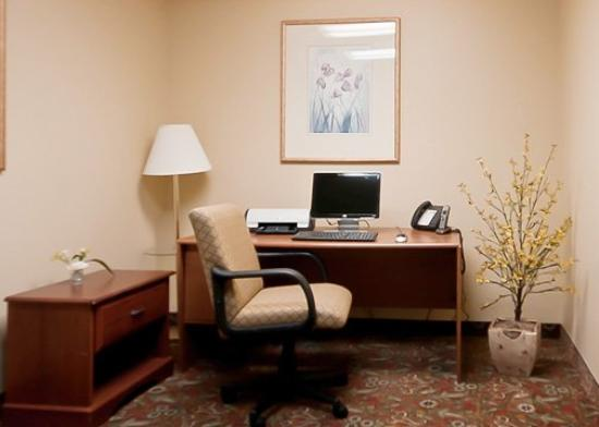 Econo Lodge Inn and Suites: Business Center