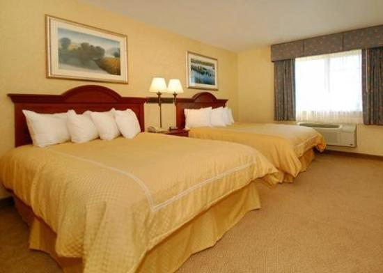 Comfort Suites Delavan - Lake Geneva Area: Guest Room
