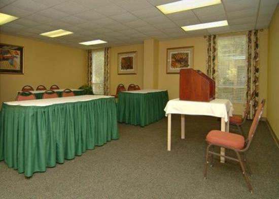 Comfort Suites at the University: Meeting Room