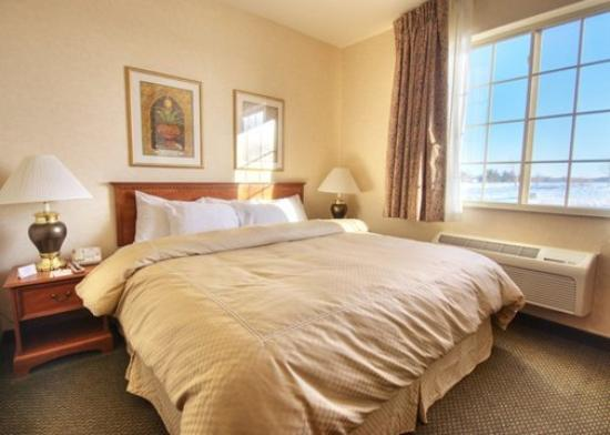 Comfort Suites Burlington: Guest Room