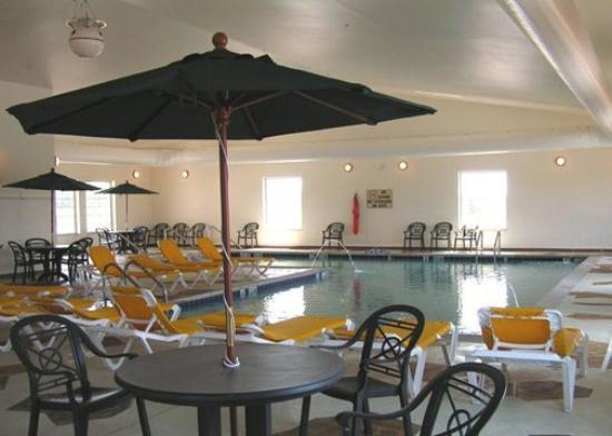 Comfort Suites Burlington: Pool