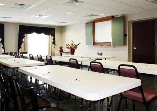 Comfort Suites Wixom: Meeting Room
