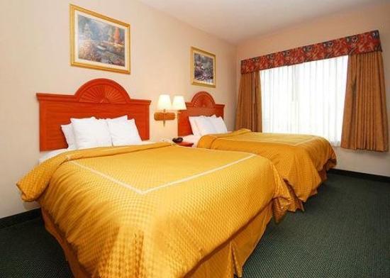 Comfort Suites Mesquite: Guest Room