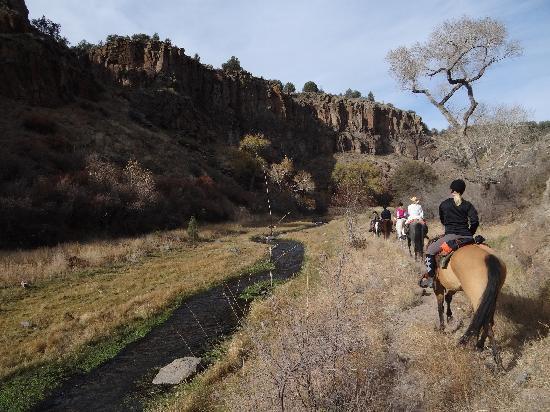 Winston, NM: Beatiful trail rides!