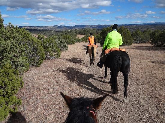 Winston, NM: Various landscape.
