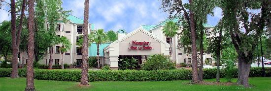 Hampton Inn & Suites Tampa - North: .