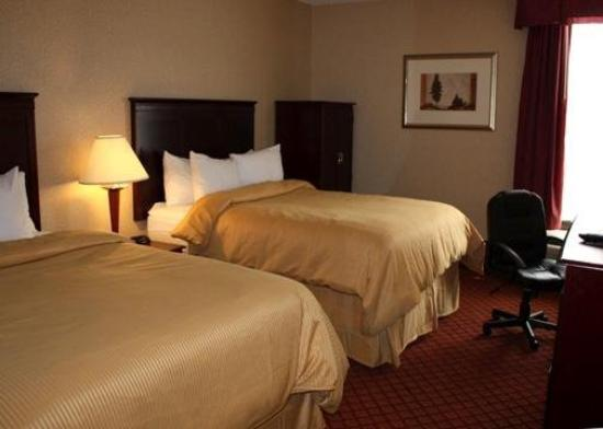 Clarion Inn & Suites Airport: Guest Room