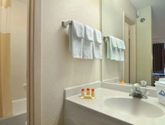 Days Inn Greenville: Bathroom