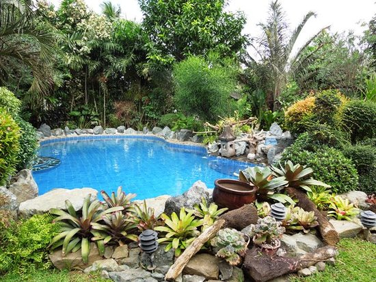 Cintai Corito's Garden: Several swimming pools to choose from.
