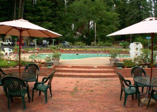 Quality Inn & Suites Santa Cruz Mountains: Pool Patio Area