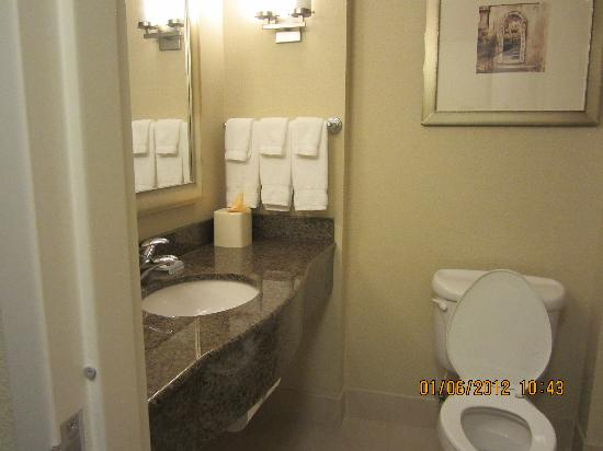 Hilton Garden Inn Richmond Airport : clean bathroom