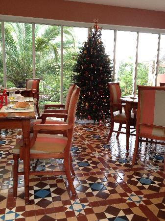 Royal Palms Hotel: Breakfast was so nice with the view of this lovely Christmas tree!