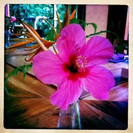 Matanivusi Surf Resort: fresh flowers every day
