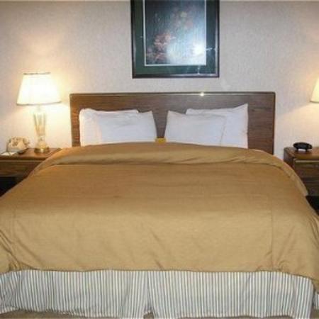 Garden Plaza Atlanta / Norcross: Standard King Room