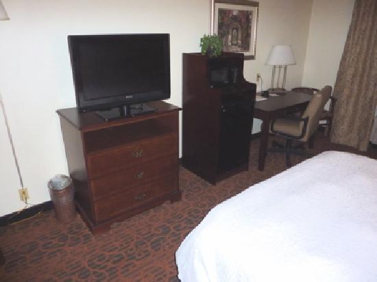 Hampton Inn Fort Stockton: Hampton Inn 2 queen bed room