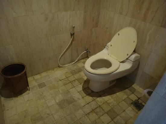 The Club Villas: Toilet... less than savory.. even when working