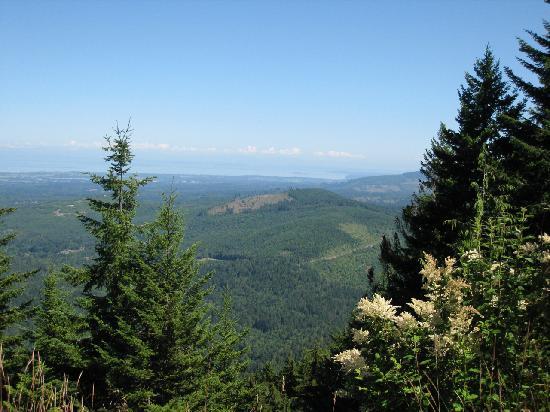 Hurricane Ridge: View from the road