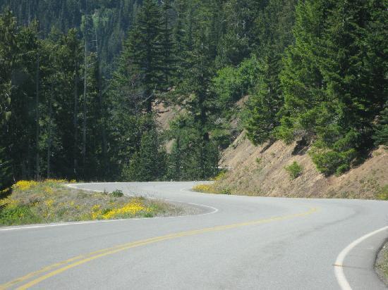 Hurricane Ridge: Winding road