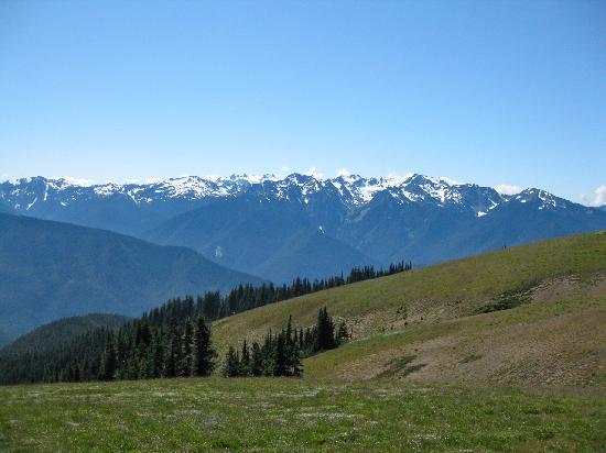 Hurricane Ridge mountain view
