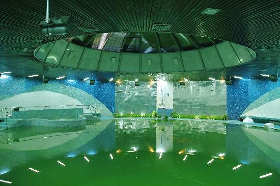 Vrnjacka Banja, صربيا: pool Aqua center