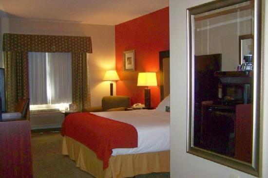 Holiday Inn Express Kendalville: Guest Room