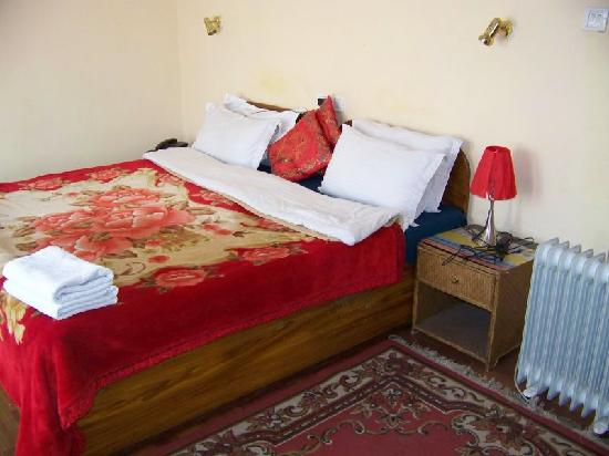 Snow Lion HomeStay: Deluxe room