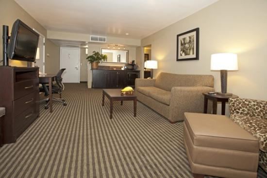 BEST WESTERN PLUS Wine Country Inn & Suites: King Suite with Jetted Tub