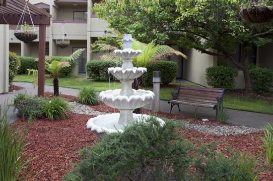Best Western Plus Wine Country Inn & Suites: Courtyard