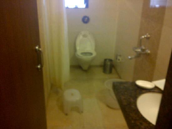 Hotel Bhagyalaxmi : bhagyalaxmi bathroom