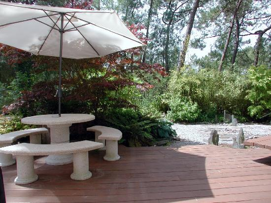 Le belvedere le touquet paris plage frankrijk foto for Le jardin le touquet restaurant