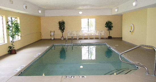 Comfort Inn: pool