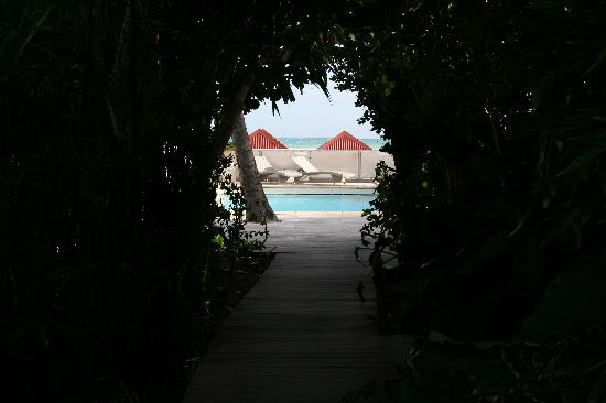 Tom Beach Hotel: Going to the pool
