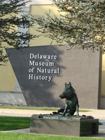 Greenville, DE: Delaware Museum of Natural History
