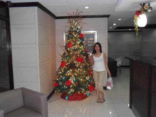 Golden Valley Hotel: reception Christmas tree.
