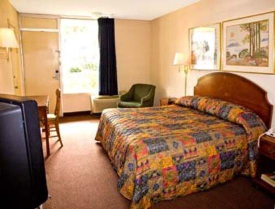 Budget Inn of DeLand: Standard One King Bed