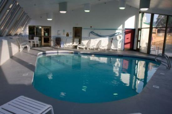 Cedars Inn Hotel: Pool