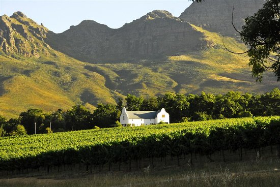 Dornier Bodega and Helderberg